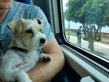 Pepsi's first train ride
